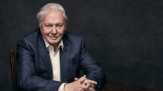 Sir David Attenborough to present A Perfect Planet on BBC One – Housewares
